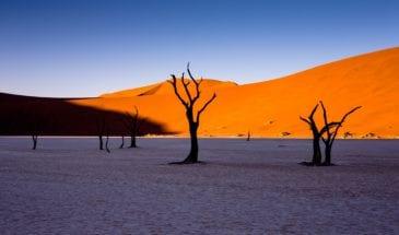 Aventure en Namibie