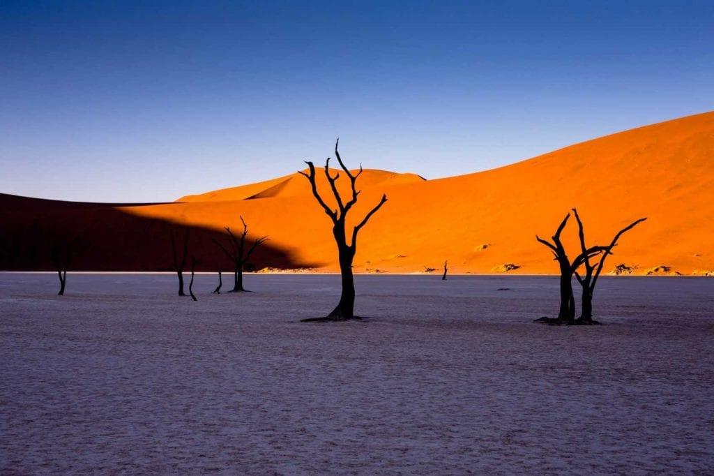 Namibie en Famille, dunes de Sossuvlei et Dead Vlei