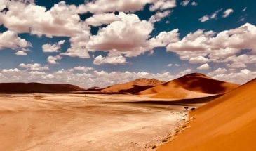 safari namibie prix