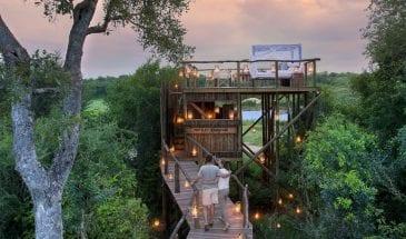 Photo itinéraire voyage de noces en Afrique du Sud, safari à deux au Kruger.