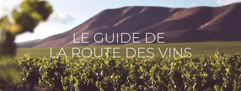"""Header de l'article """"Guide de la Route des Vins en Afrique du Sud"""""""