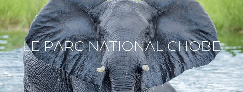 Header Le Parc National Chobe