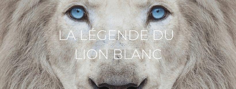 Header : La Légende du lion blanc de Timbavati