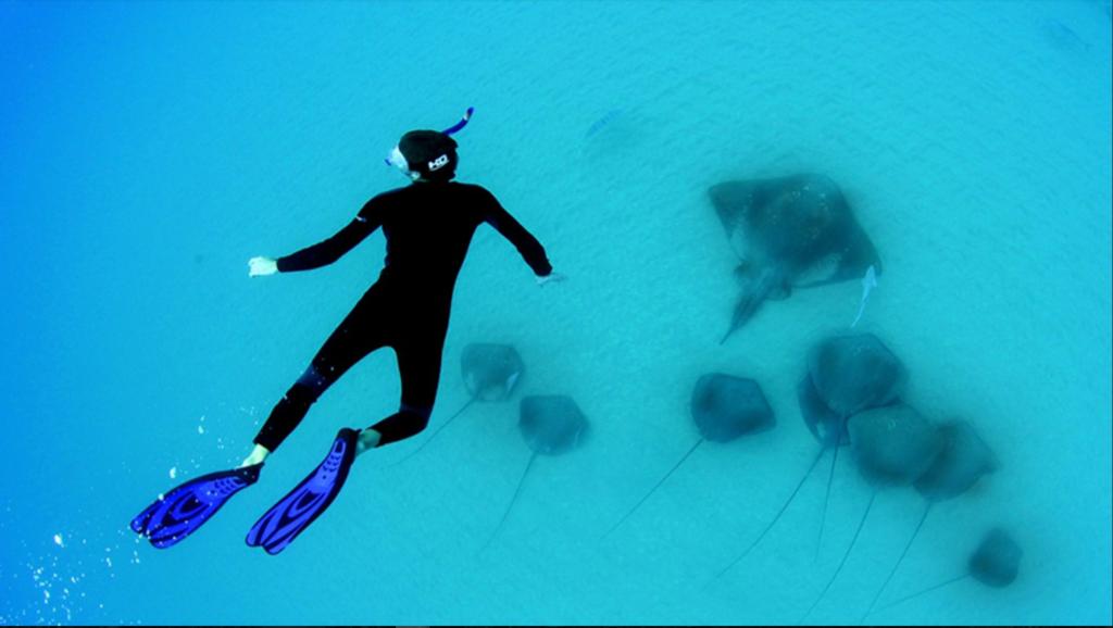 Bazaruto-snorkeling-mozambique-que-faire-et-voir