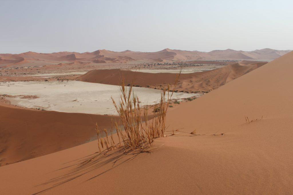 quand-partir-en-namibie-désert