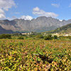 franschhoek-winelands-sout-african-travellers-sat-circle