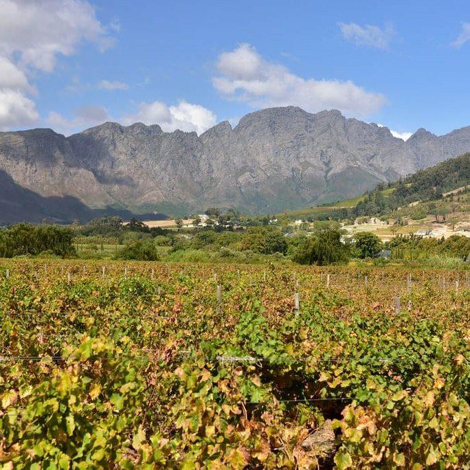 Vallée de Franschhoek sur la Route des Vins dans les Vignobles du Cap en Afrique du Sud un jour ensoleillé.